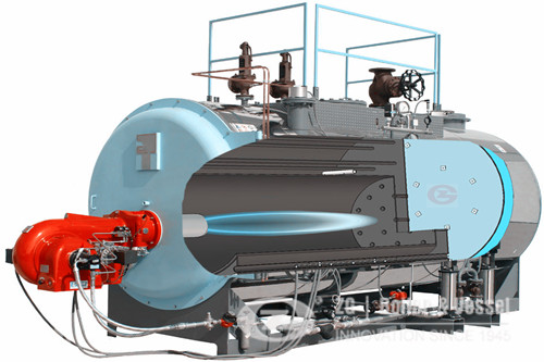 CNG fired steam boiler manufacturer image
