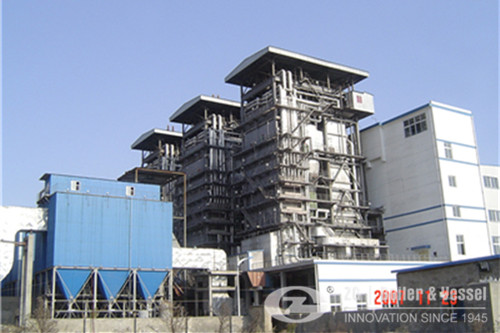 Rubber Wood fired steam boiler manufacturer image