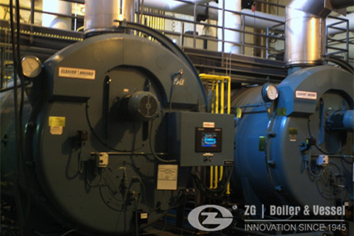 Steam boiler for cattle feed plant cost image