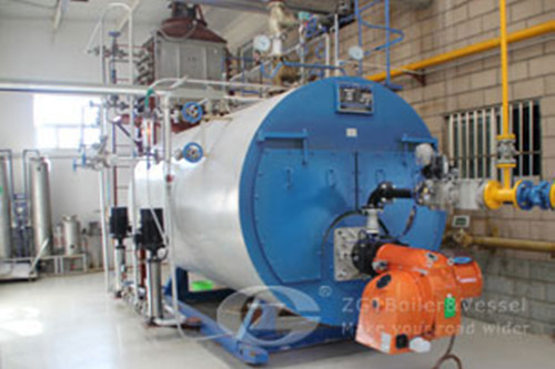 Boiler For Cattle Feed Factory in Chile image