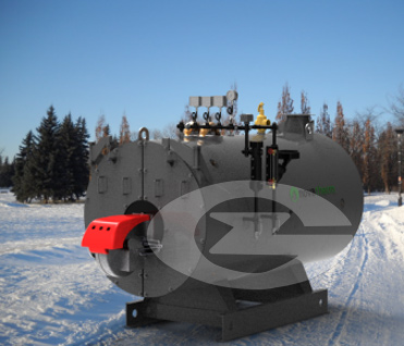 4 ton steam boiler image